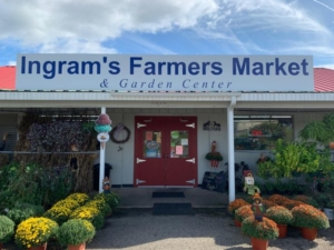 Ingram's store front with flower pots and bushes in front